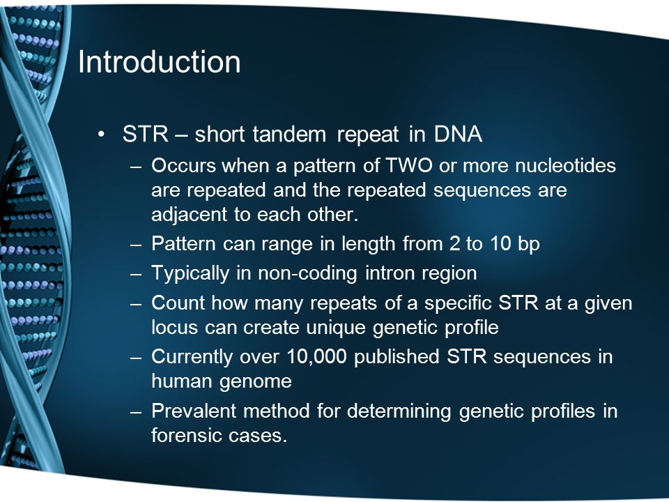 Introduction STR – short tandem repeat in DNA