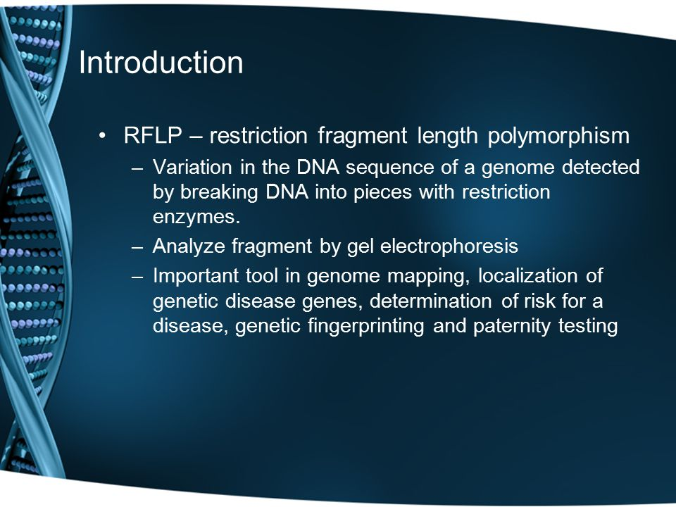 Introduction RFLP – restriction fragment length polymorphism