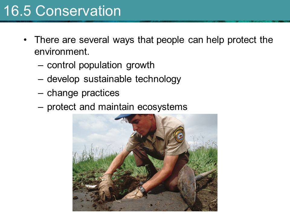 16.5 Conservation There are several ways that people can help protect the environment. control population growth.