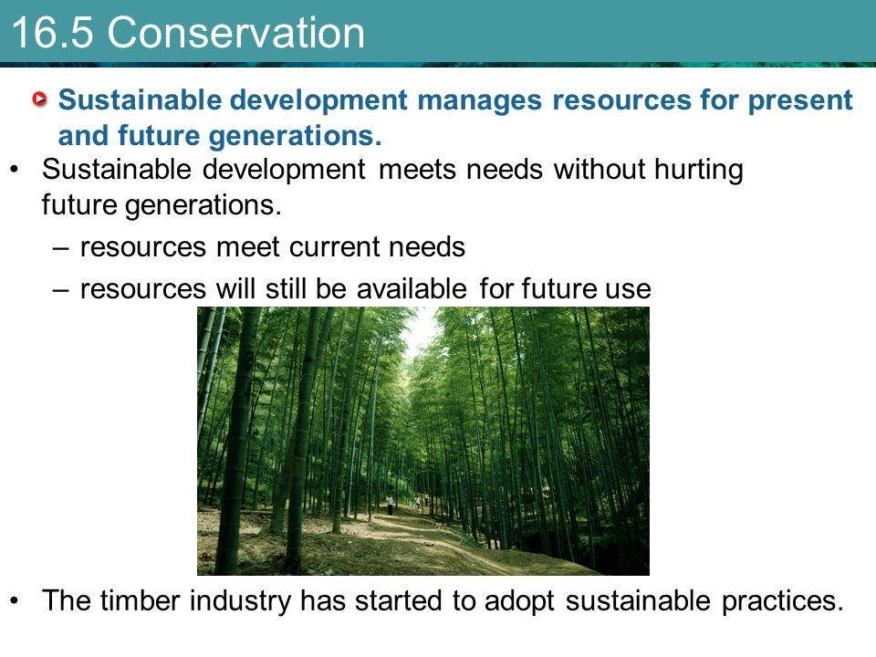 16.5 Conservation Sustainable development manages resources for present and future generations.
