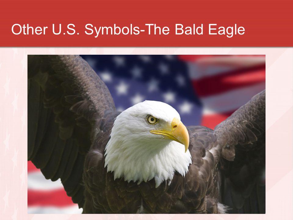 Other U.S. Symbols-The Bald Eagle