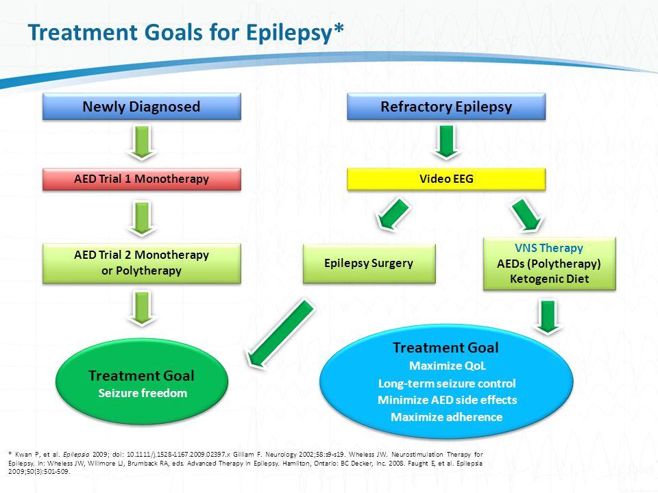 Treatment+Goals+for+Epilepsy%2A.jpg