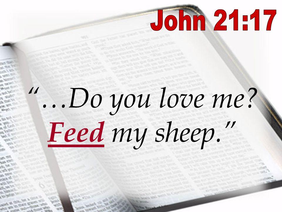 Image result for john 21:17