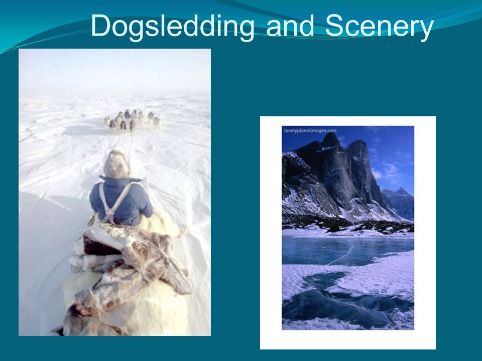 Dogsledding and Scenery