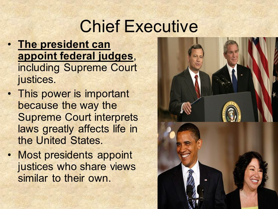 The president as chief executive essay