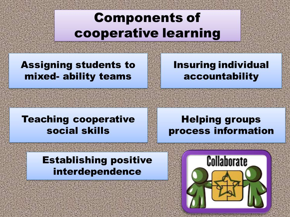 Components of cooperative learning