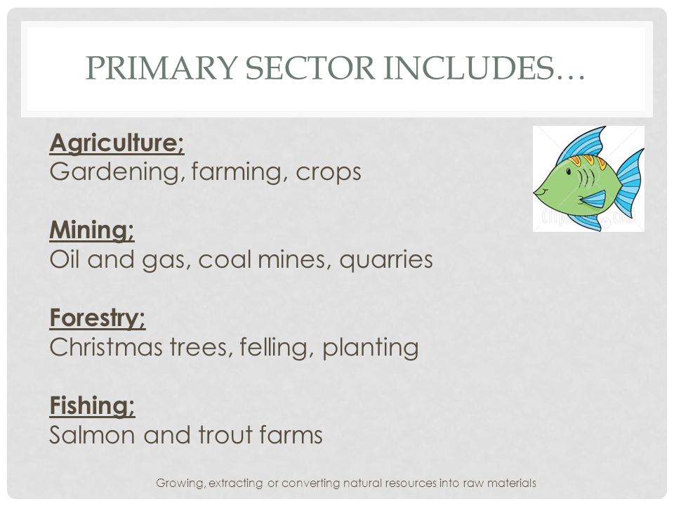 Primary sector includes…