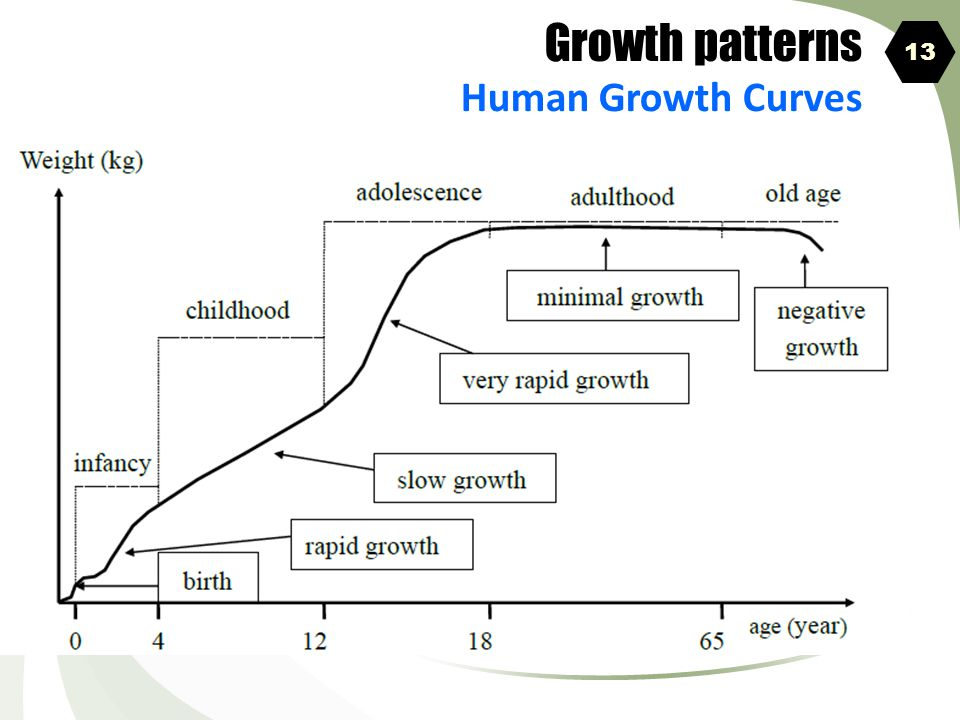 Growth patterns Human Growth Curves 13