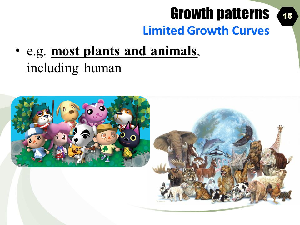Growth patterns e.g. most plants and animals, including human