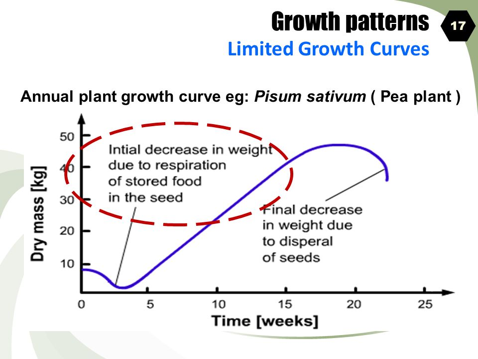 Growth patterns Limited Growth Curves