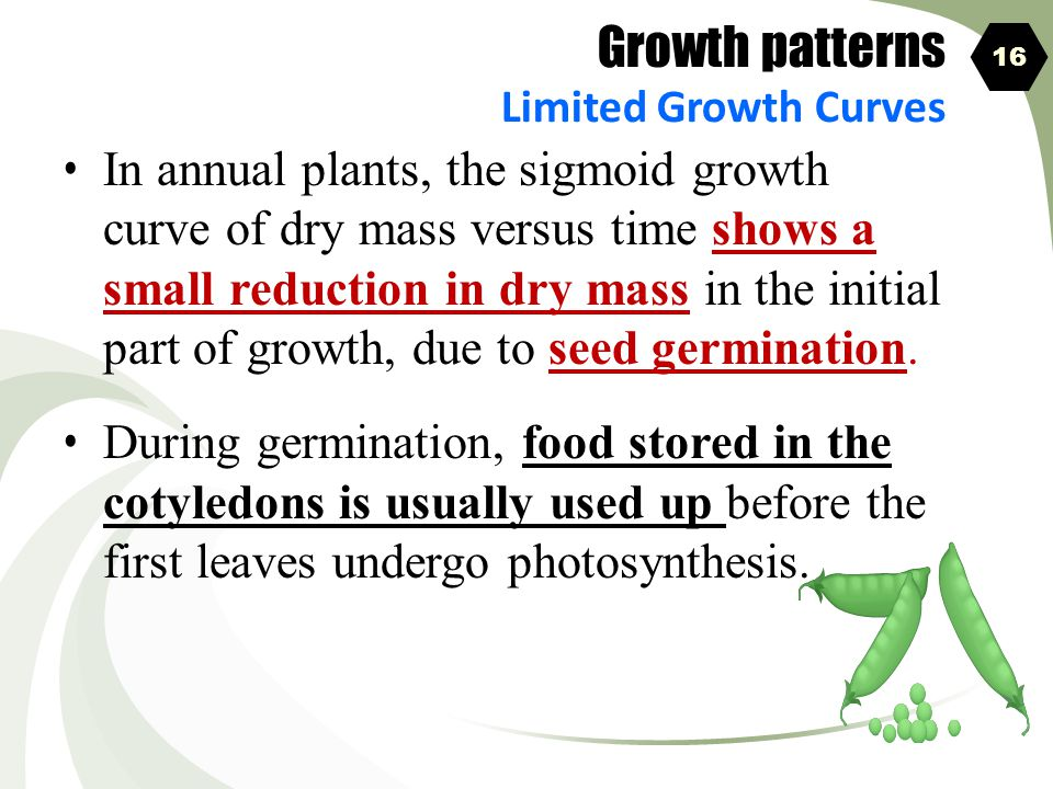 Growth patterns Limited Growth Curves. 16.