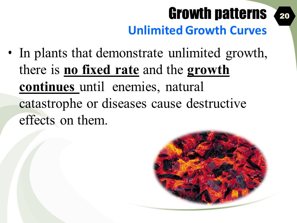 Growth patterns Unlimited Growth Curves. 20.
