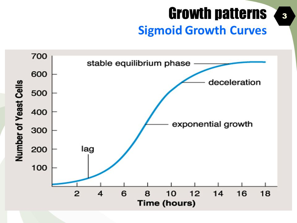 Growth patterns Sigmoid Growth Curves 3 4