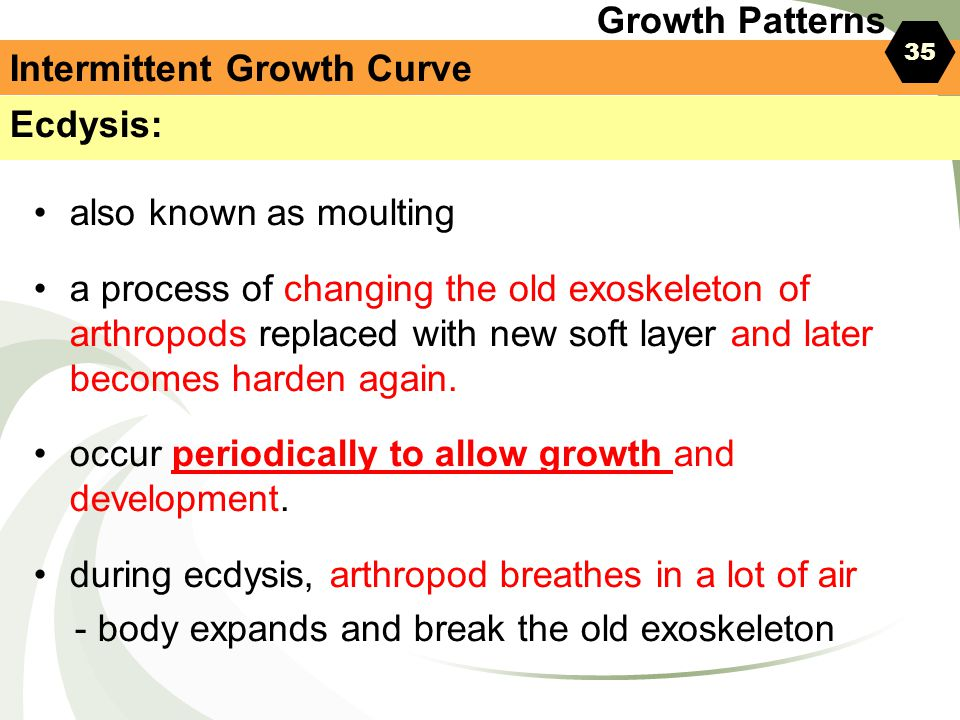 Intermittent Growth Curve