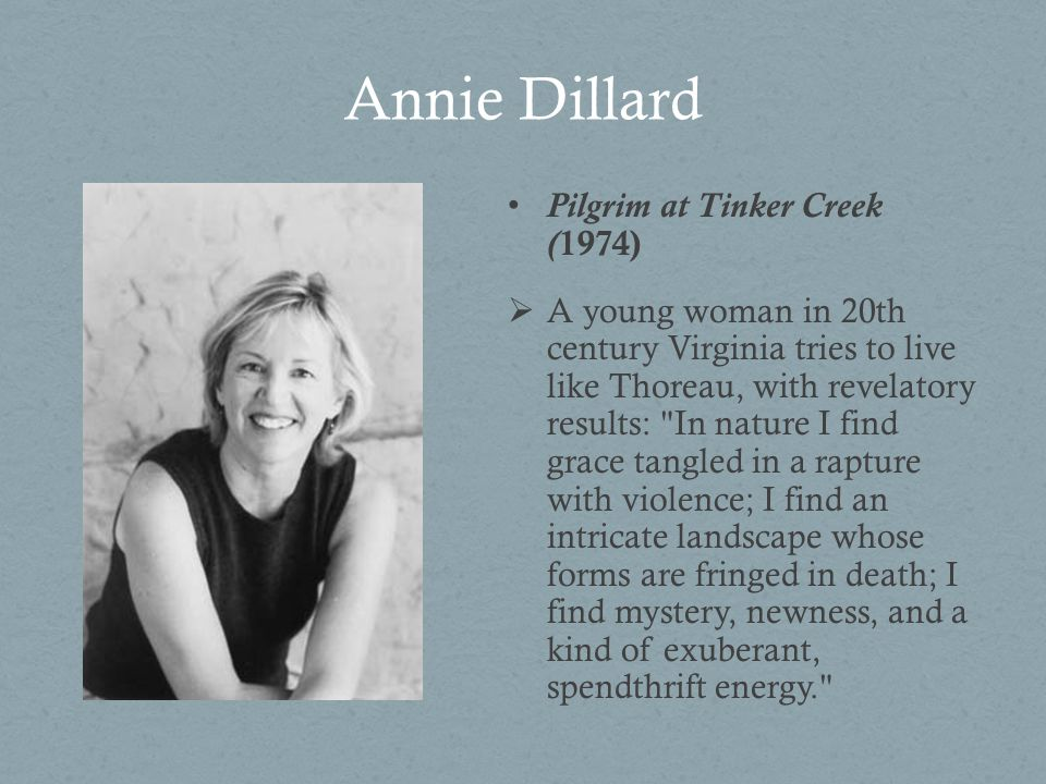 an analysis of annie dillards pilgrim at tinker creek In pilgrim at tinker creek she examines her observations of nature and the natural world, bringing her curious, creative mind to bear on what she notices what comes out is a song, a poem, a shout of hallelujah, a plea to the reader to be amazed at the world around and inside of ourselves  pilgrim at tinker creek by annie dillard weaver.