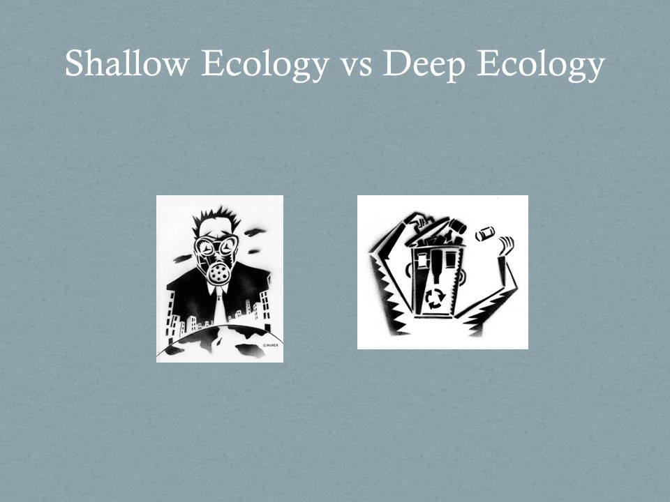 Difference between Deep and Shallow Ecology