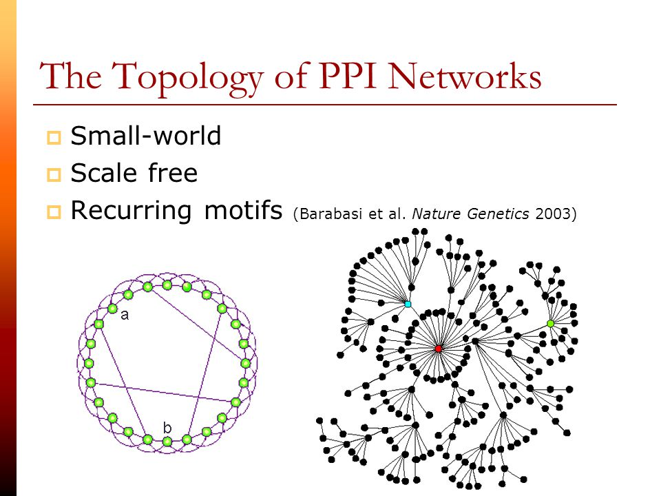 how to create a ppi network