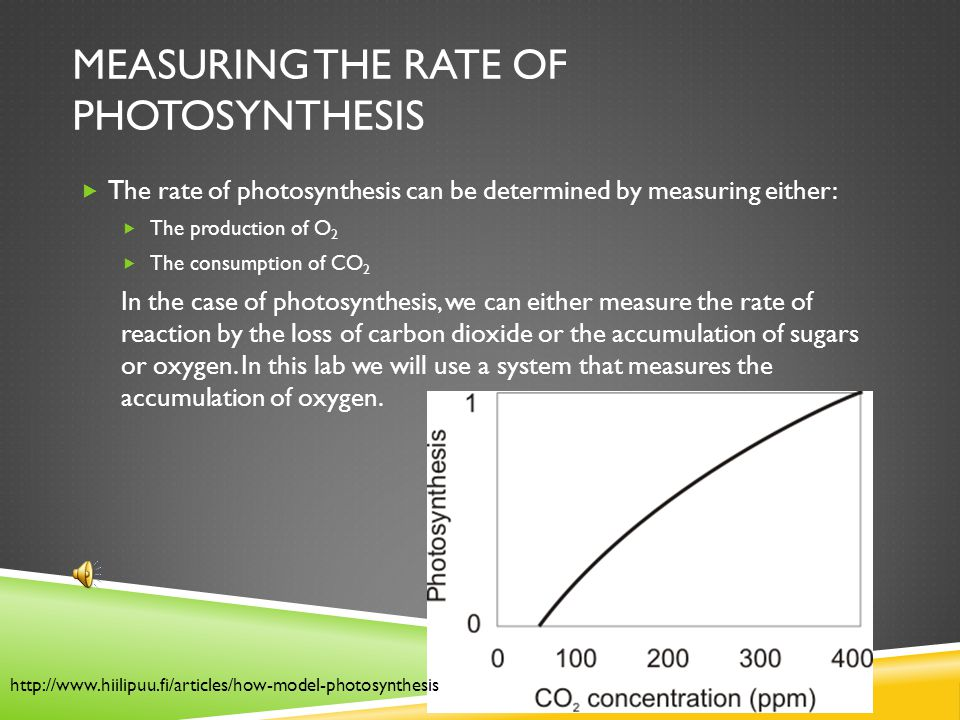 co2 consumption rate photosynthesis lab Student exploration: photosynthesis lab  photosynthesis lab gizmo™, you  can monitor the rate of  b how does co2 level affect oxygen production.