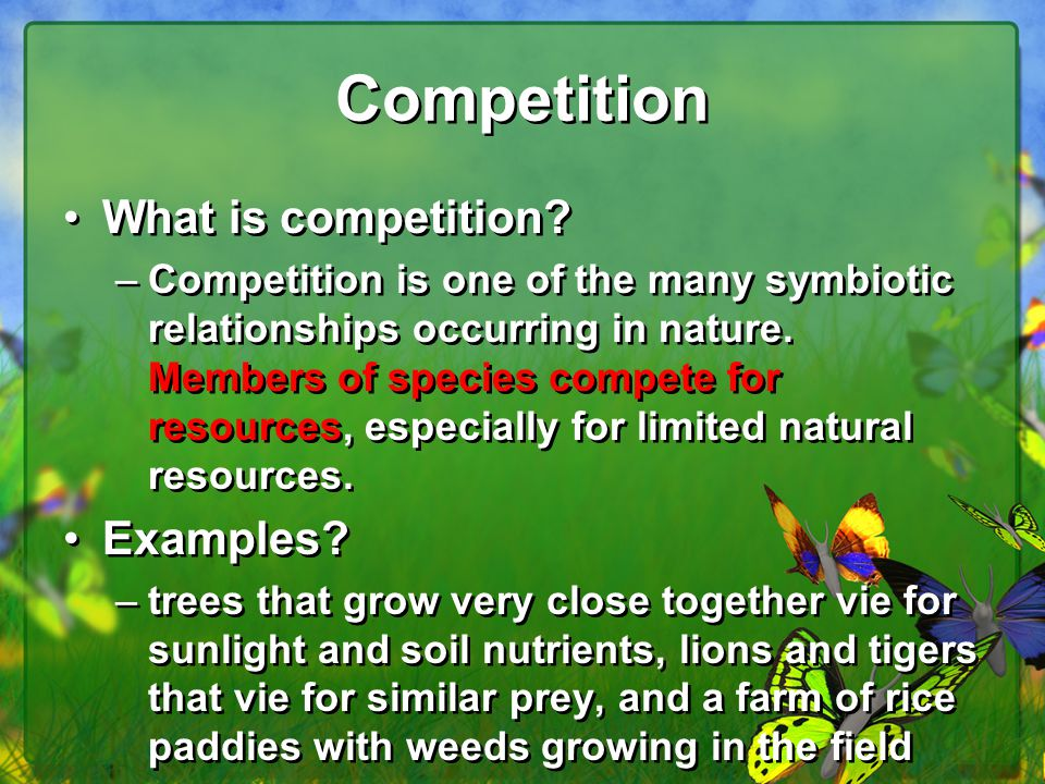 examples competitive relationship between animals and plants