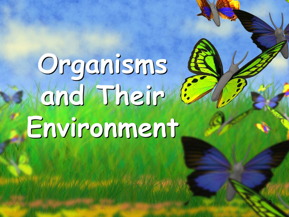 relationship of organisms and their environments inc