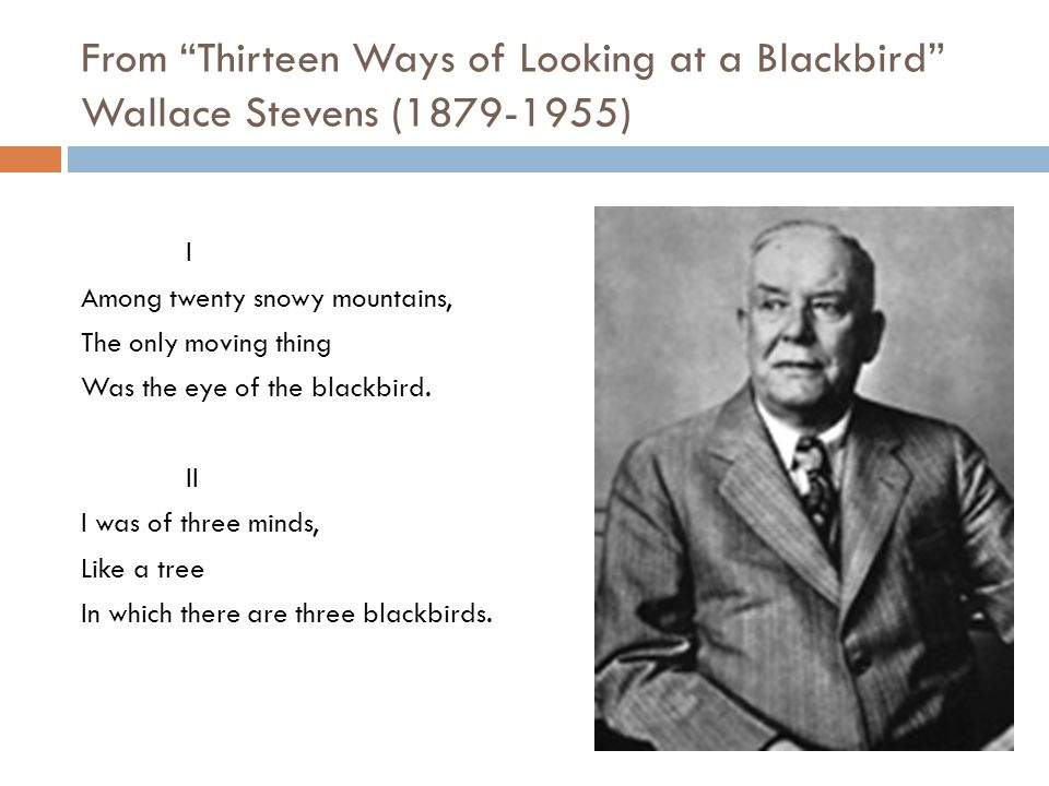 thirteen ways of looking at a blackbird by wallace stevens essay Thirteen ways of looking at electronic literature, or, a print essai on tone in electronic literature, 10 by mario aquilina and ivan callus 2018-02-04.