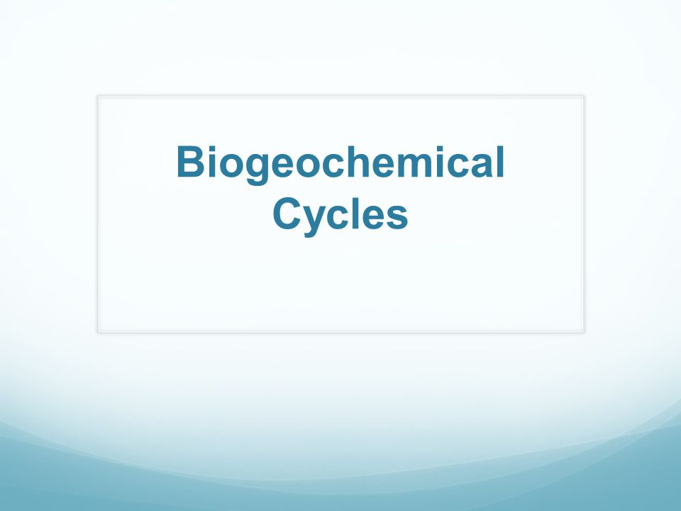 Biogeochemical Cycles ppt download – Biogeochemical Cycles Worksheet