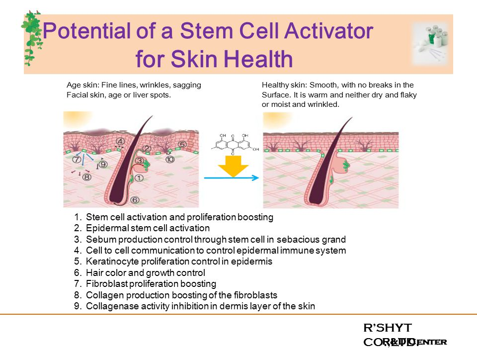 stem cells activator