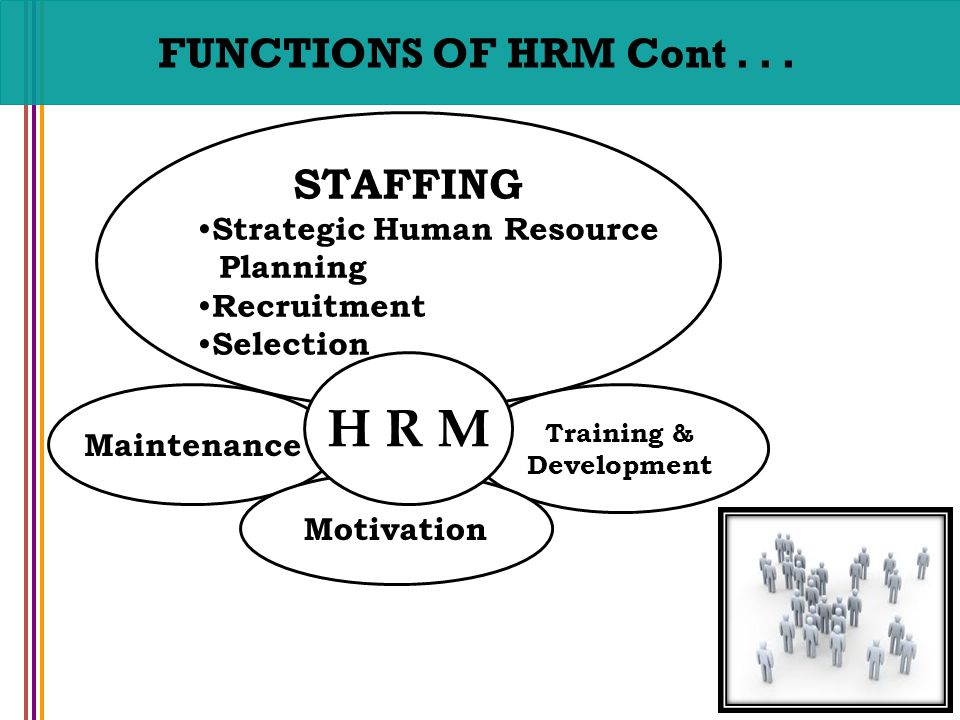 hrm functions stuffing Staffing role of the hr manager: strategic workforce planning staffing and recruiting during the boom years one of the key areas that the hrm unit works with is the staffing function.