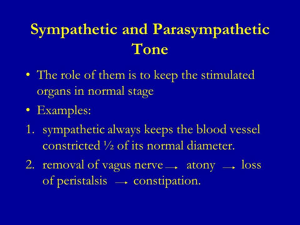Parasympathetic And Sympathetic Ecosia