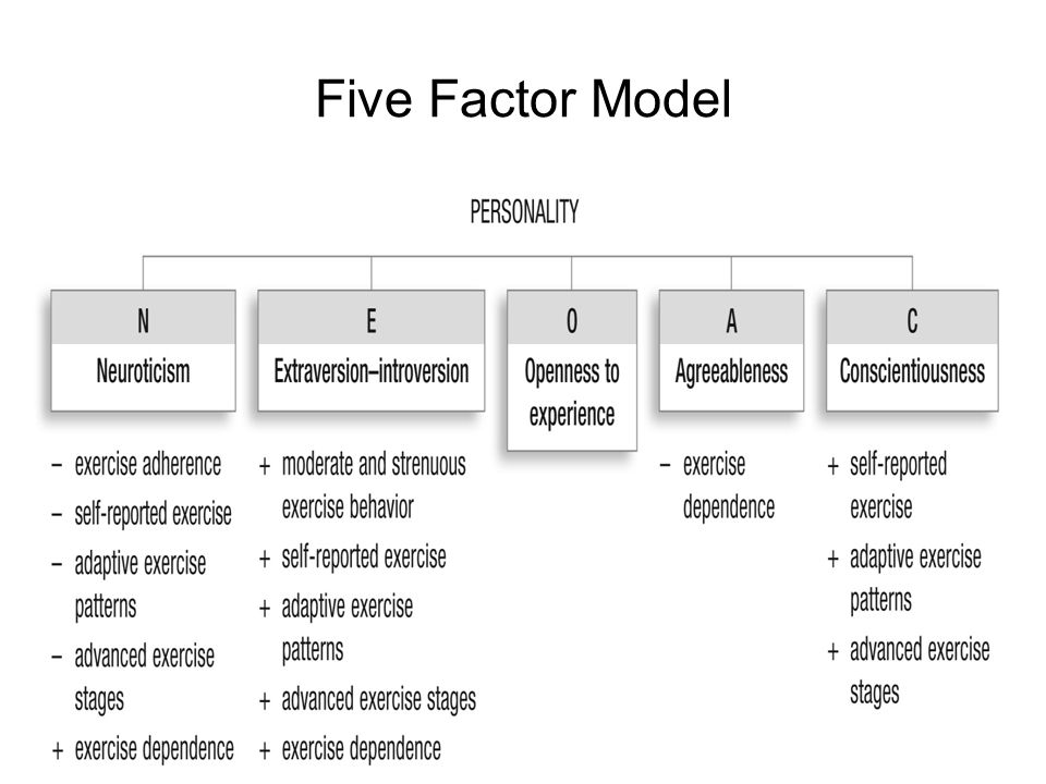 the five factor model How the 'super traits' of the five factor model explain differences in personality and the way people behave.