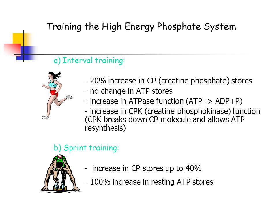 Training your energy systems: The Sprint System (ATP-PCr, Phosphate)