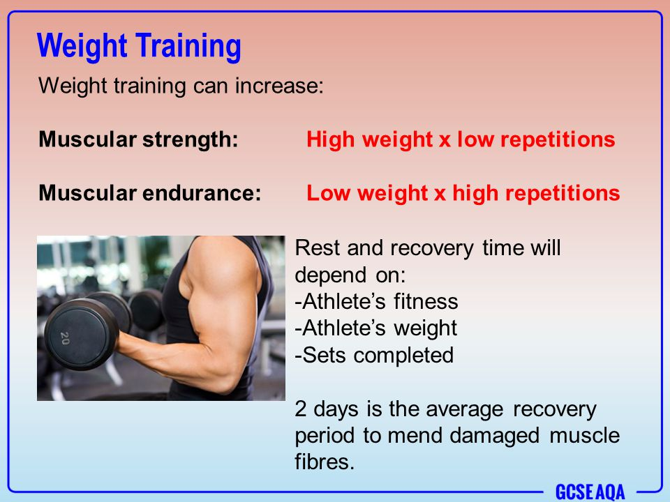 muscle and strength pyramid training pdf download free
