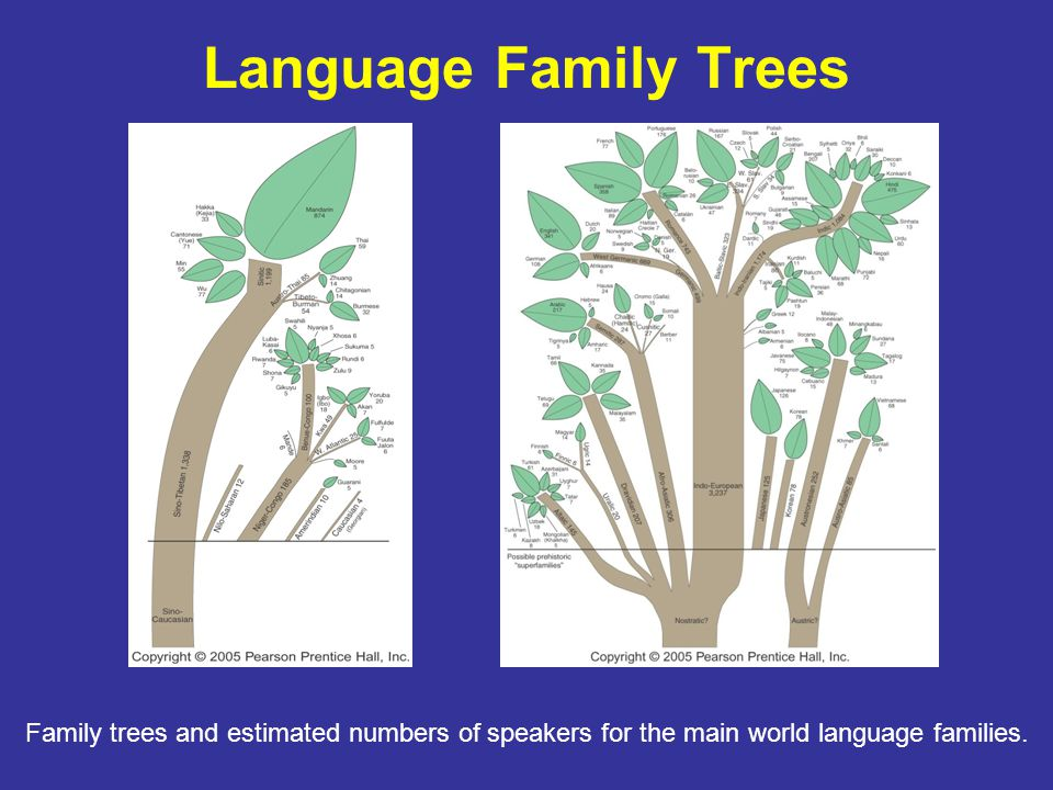 Language Family Trees Family trees and estimated numbers of speakers for the main world language families.