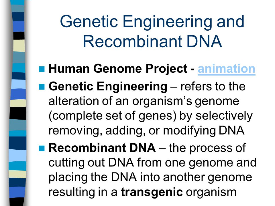 genes and genetic engineering essay English essays: genetic engineering this research paper genetic engineering and other especially in the treatment of genetic disorders gene therapy may.