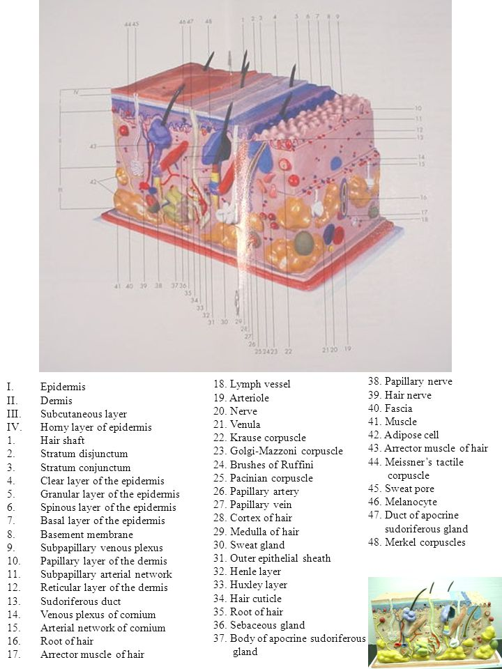 On the verge of being caught