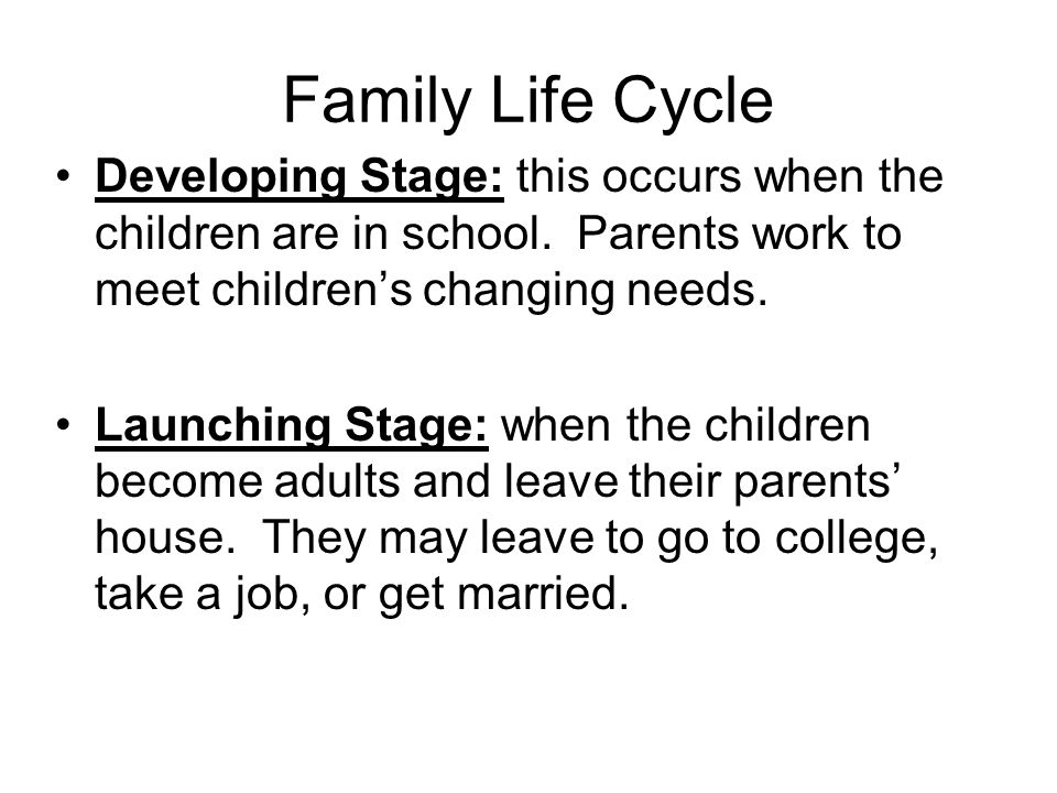 single parent family life cycle How much is attributable to poorer mental health of lone parents following a parental separation how much is changes that involve the emergence of more chaotic patterns of family life are unlikely to be beneficial for children, even if some strive to furnish a sense of order where their parents fail to do so butler et al.