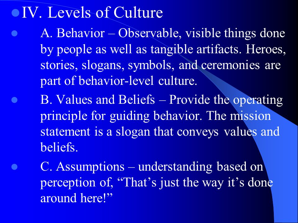 IV. Levels of Culture