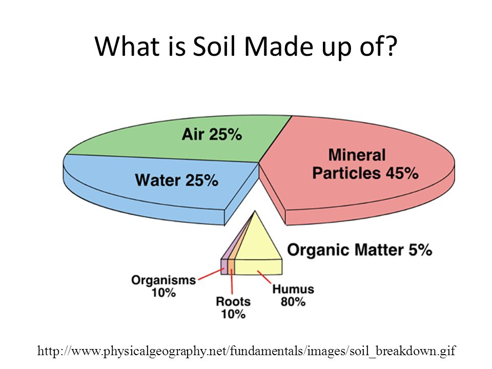 Growing plants hydroponically vs in soil ppt video for What is soil