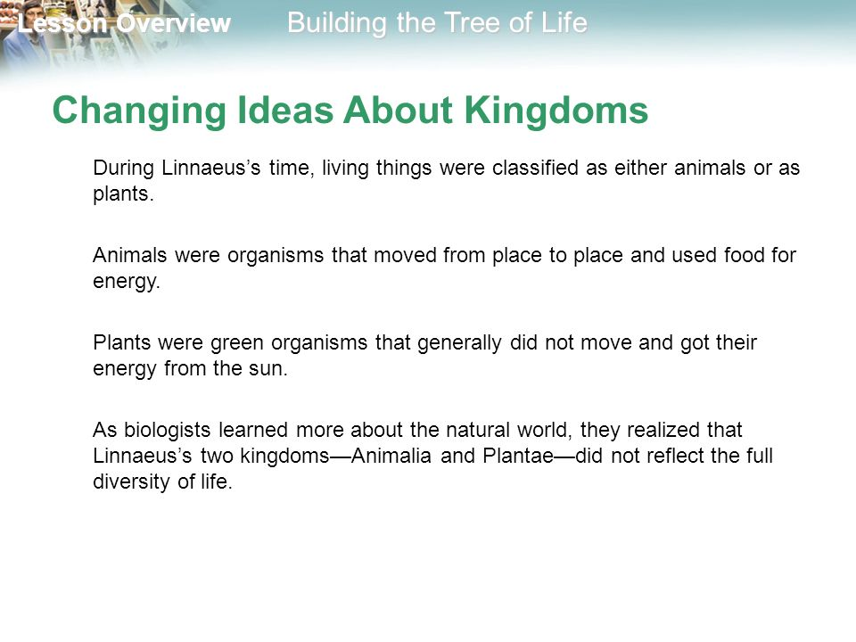 Changing Ideas About Kingdoms