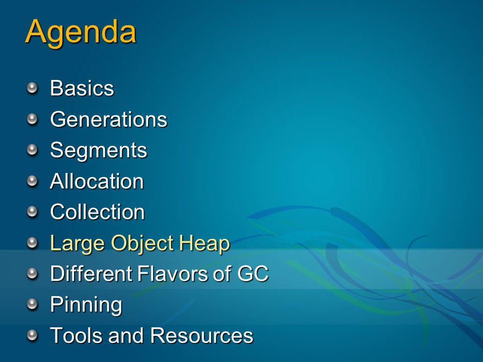 Agenda Basics Generations Segments Allocation Collection