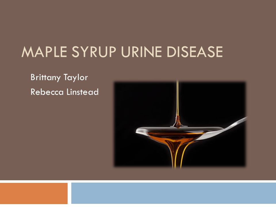 maple sugar urine disease Maple syrup urine disease (msud) is an autosomal recessive disorder which can be caused by mutation in at least three genes these genes encode the components of the branched-chain alpha-keto acid dehydrogenase (bckad) complex, which catalyses the catabolism of the branched-chain amino acids (bcaas.