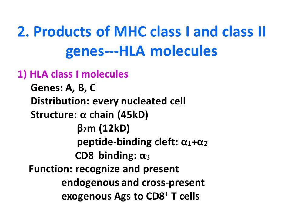 HLA Immune Function Genes in Autism - academia.edu