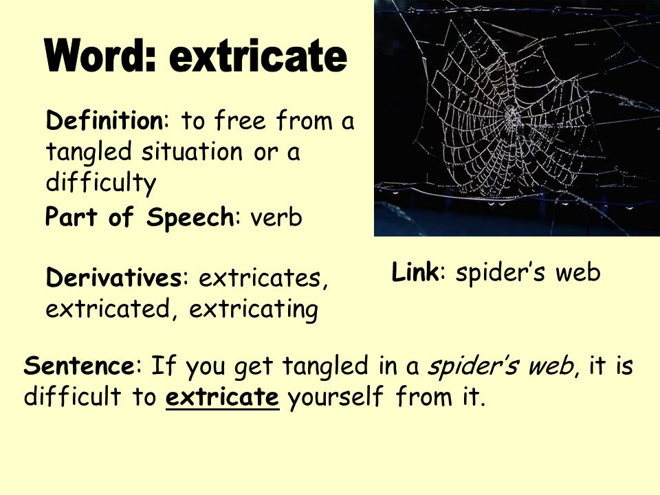 Good Word: Extricate Definition: To Free From A Tangled Situation Or A