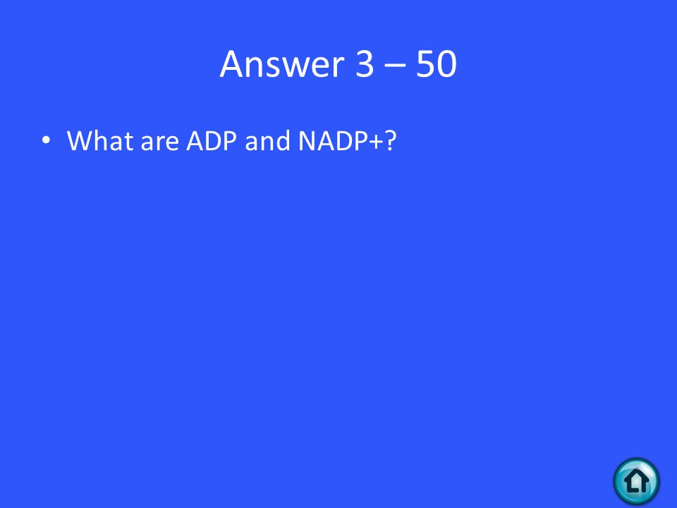 Answer 3 – 50 What are ADP and NADP+