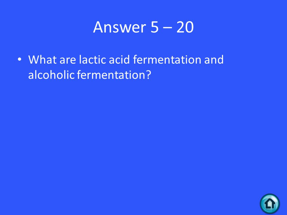 Answer 5 – 20 What are lactic acid fermentation and alcoholic fermentation