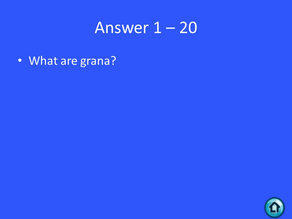 Answer 1 – 20 What are grana