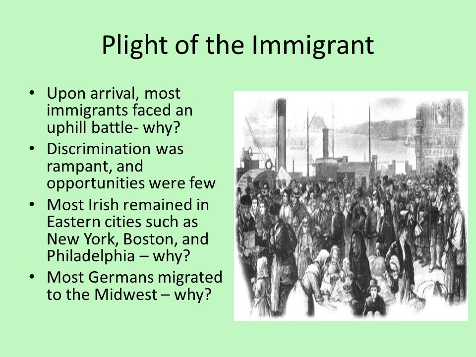the plight of immigrants to boston essay Kcc alterna-tv news back to immigrant experience essay by marson binios an immigrant is a person from one country who moves to another country permanently for a better life there are many different reasons why people have their country to go to another country.