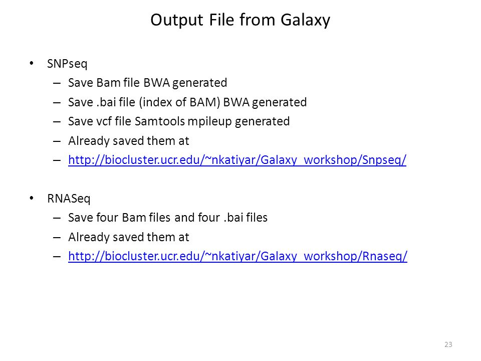 Output File from Galaxy