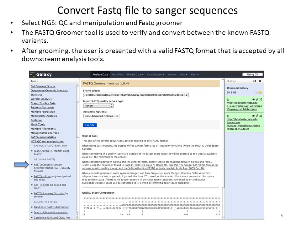 Convert Fastq file to sanger sequences