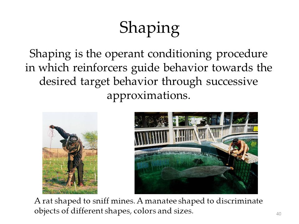 an overview of operant and classical conditioning two different learning methods One important type of learning, classical conditioning these two variables are called the unconditioned stimulus operant conditioning.